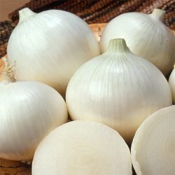 ONION - Sweet Spanish White