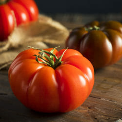 TOMATO - Red Russian - Lycopersicon esculentum