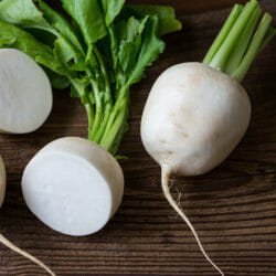 TURNIP - White Egg - Brassica rapa