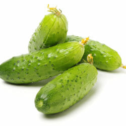 CUCUMBER - German Pickling - Cucumis sativus