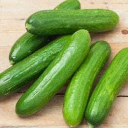 CUCUMBER - Spacemaster - Cucumis sativus