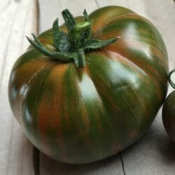 TOMATO - Chocolate Lightning - Lycopersicon esculentum