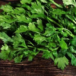 Par-cel - Chinese leaf celery, Chinese Parsley