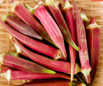 The Beginners Guide to Growing Okra